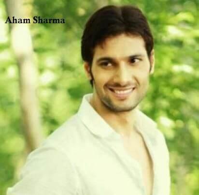 Nirbhay Pundir aka Aham Sharma