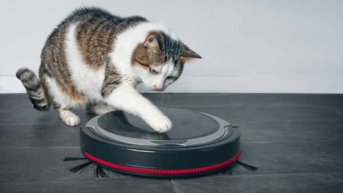 Best Robot Vacuum For Pet Hair