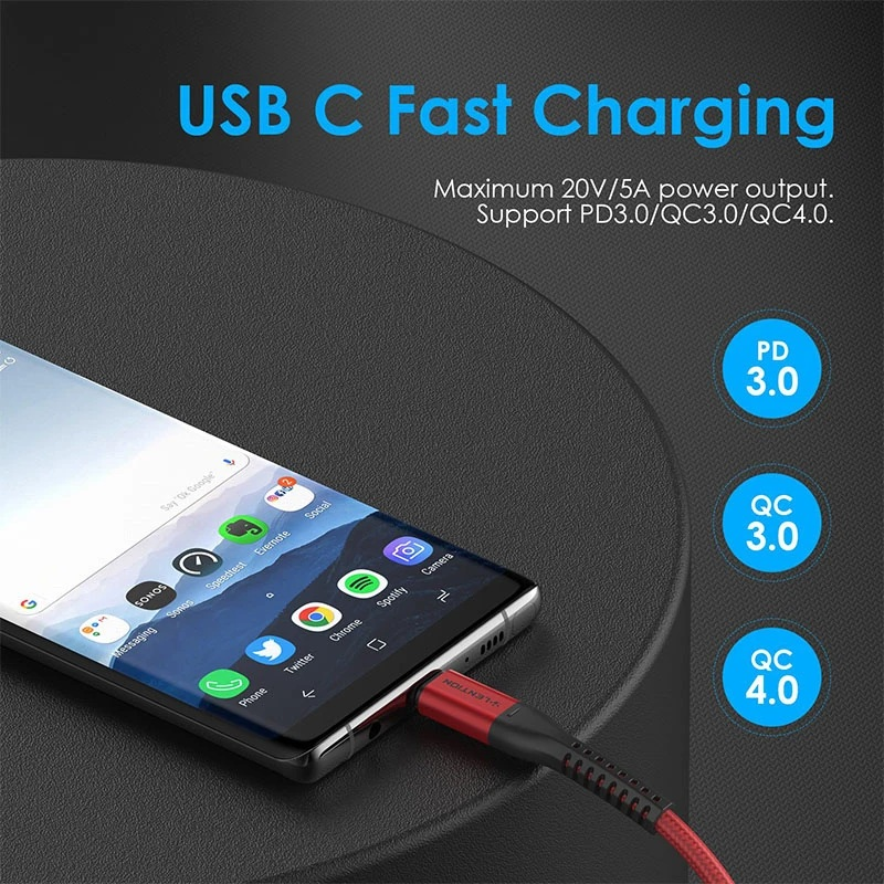 1. LENTION 10ft USB C to USB C Fast Charging Cable Covered with Braided Cord (CB-CCT)